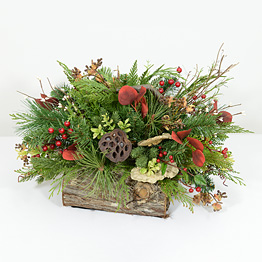 Alpine Winter Holiday Arrangement
